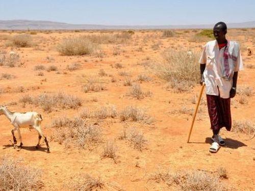 Biến đổi khí hậu châm ngòi xung đột ở châu Phi