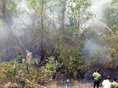 Gần 120 người tham gia chữa cháy rừng ở Núi Tô