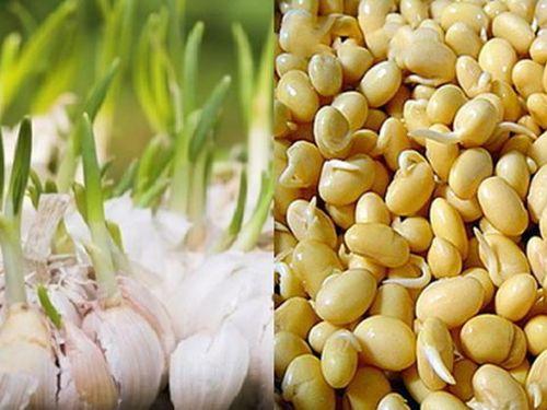 2 thực phẩm mọc mầm tăng gấp đôi dinh dưỡng, loại thứ 3 cần tránh