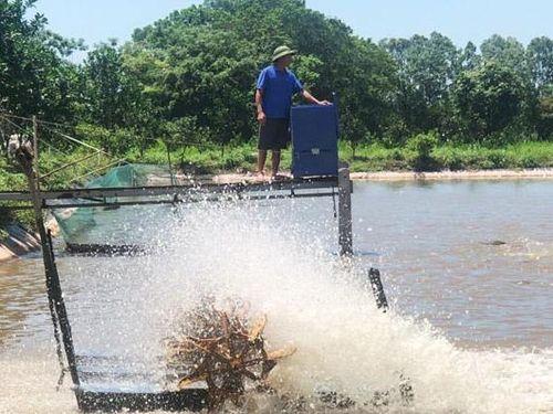 Hình thành 82 vùng nuôi trồng thủy sản tập trung quy mô lớn