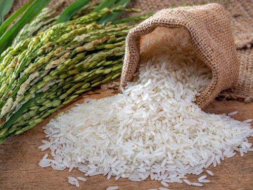 Sau gạo cấp thấp, Việt Nam bắt đầu mua gạo cao cấp Ấn Độ