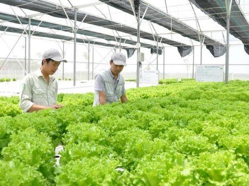 Cơ hội cho các doanh nghiệp công nghệ nông nghiệp Việt Nam mở rộng thị trường
