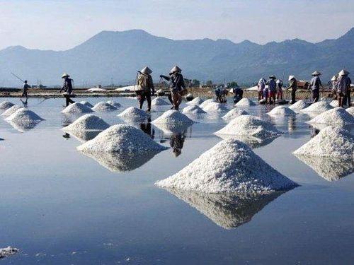 'Nghề độc' trên sàn: Mặn đắng nghề làm muối, vẫn mong mỏi 'gà đẻ trứng vàng'