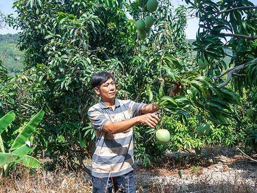 Kênh dẫn vốn hiệu quả phục vụ phát triển nông thôn