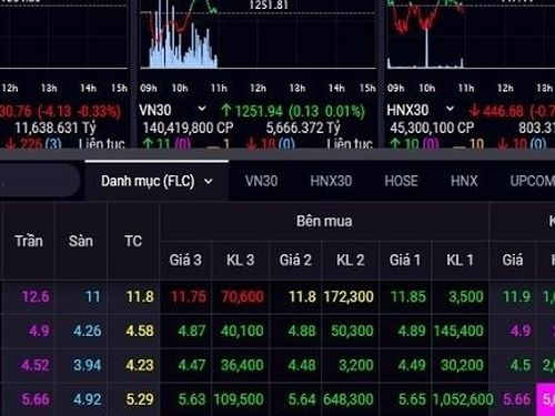 Một công ty chứng khoán 'all in' cổ phiếu họ FLC