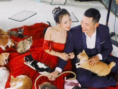Cặp đôi chụp ảnh cưới độc đáo cùng dàn chó mèo 'cưng xỉu'