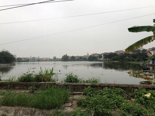 Vụ đấu giá khu đất hơn 18.000 m2 ở Phú Thọ: Bộ Tư pháp vào cuộc, dừng đấu giá