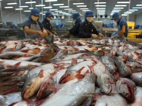 ADB dự báo GDP Việt Nam tăng trưởng khả quan nhờ kiểm soát COVID-19