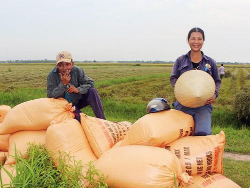 Bài 3: Chuyện 'hai nhà' làm nông nghiệp hữu cơ nơi Vĩ tuyến 17 ngày và đêm