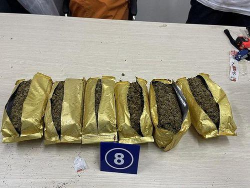 Hải quan phát hiện, bắt giữ hơn 1.100 vụ buôn lậu qua biên giới