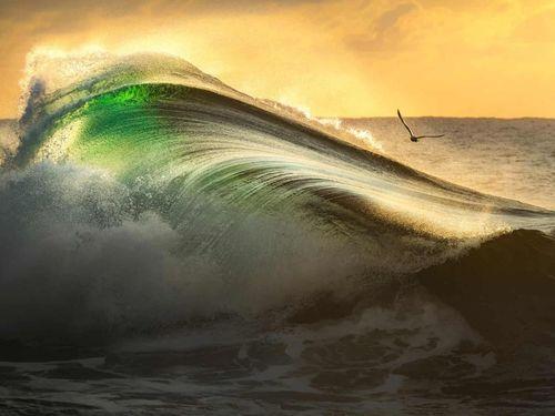 Nghệ thuật lướt sóng trong loạt ảnh đẹp nhất năm 2021