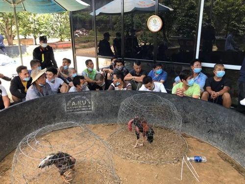 Bắt 47 đối tượng đang say sưa cá cược đá gà trong Village Garden Huế