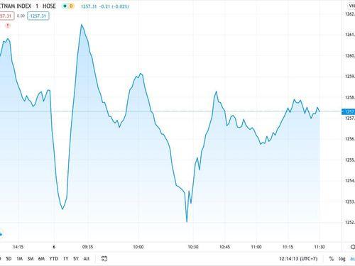 VN Index đi ngang, nhóm cổ phiếu penny hưởng lợi