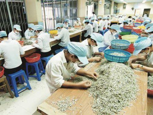 Đảm bảo việc làm bền vững cần nâng cao mức sống và cải thiện điều kiện việc làm của người lao động