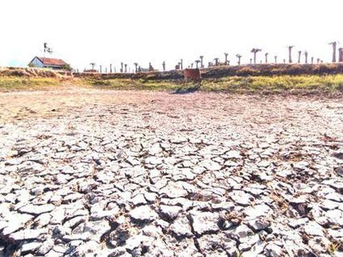 Tây Nguyên - Nam Trung bộ ứng phó nguy cơ sa mạc hóa - Bài 1: Suy kiệt nguồn nước