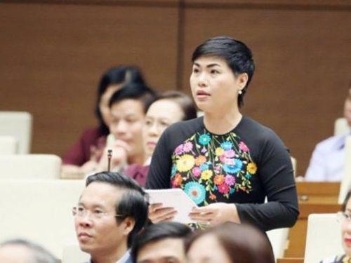 Đường tới Quốc hội: Dấu ấn của Chủ tịch Sonadezi Đỗ Thị Thu Hằng