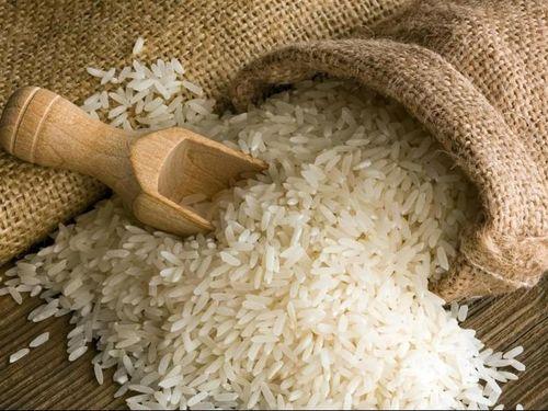 Bộ Nông nghiệp Mỹ: Việt Nam sẽ duy trì vị thế là nhà xuất khẩu gạo lớn thứ hai thế giới