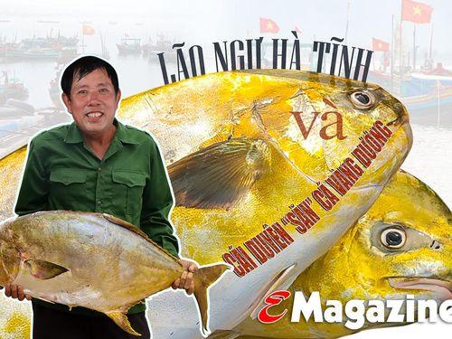 Nghe lão ngư Hà Tĩnh kể lại chuyện săn cá vàng dương