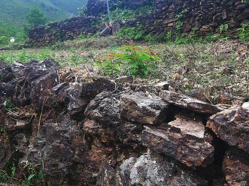 Hai thành cổ bị 'lãng quên' tại Nghệ An