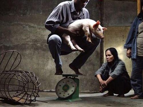 Phim 'Vị' bị xử phạt 35 triệu đồng