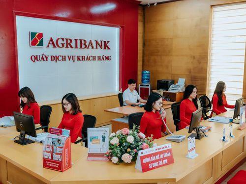 Agribank báo lãi giảm về 10.354 tỷ, nợ xấu tăng lên 21.500 tỷ đồng
