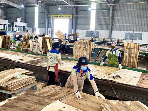 Quảng Bình: Tuyển sinh giáo dục nghề nghiệp được 6.130 người