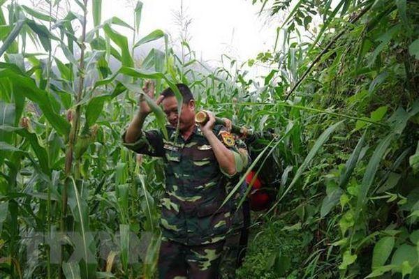 Bộ đội biên phòng Lào Cai tìm thấy thi thể cụ bà bị lạc trong rừng
