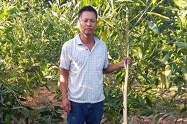 Cần nghiêm trị hành vi hủy hoại nông sản của nông dân