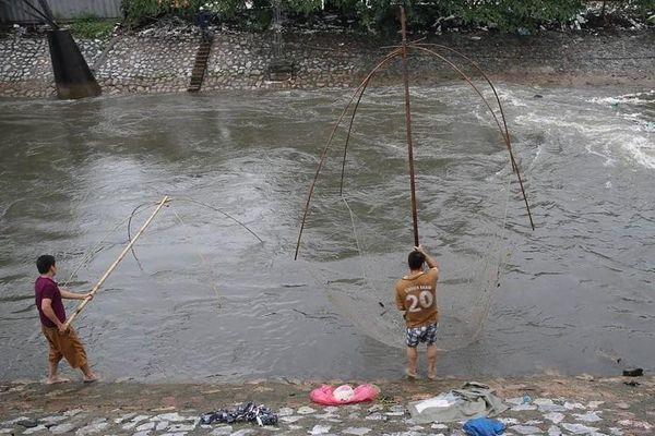 Hà Nội: Mưa lớn khiến nước dâng cao ở nhiều sông