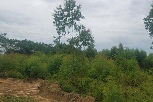 Phú Thọ: UBND TP Việt Trì giải quyết cho 33 hộ dân xã Hy Cương ổn định cuộc sống sau 10 năm chờ đợi