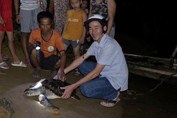 Quảng Trị: Phát hiện rùa biển 15kg 'đi lạc' vào sông Hiếu