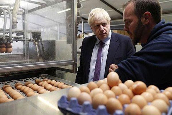 Rò rỉ tài liệu mật: Người Anh sẽ thiếu lương thực, thuốc men...