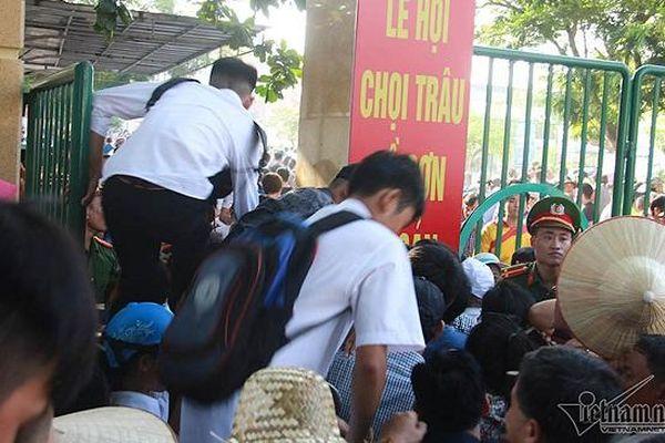 Sân Đồ Sơn quá tải, người dân giẫm lên nhau trèo tường vào xem chọi trâu