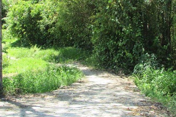 Huyện Vũ Quang thông tin giải quyết kiến nghị về lấn chiếm đường dân sinh