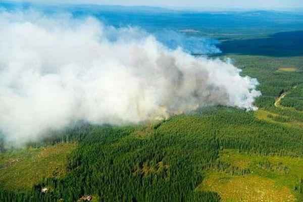 Cháy rừng ở… Bắc Cực nhiều nhất trong 16 năm qua