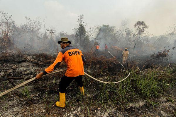Indonesia: Máy bay Lion Air phải chuyển hướng do khói mù dày đặc