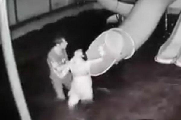 Xác minh vụ chồng dìm vợ xuống bể bơi trước mặt con nhỏ