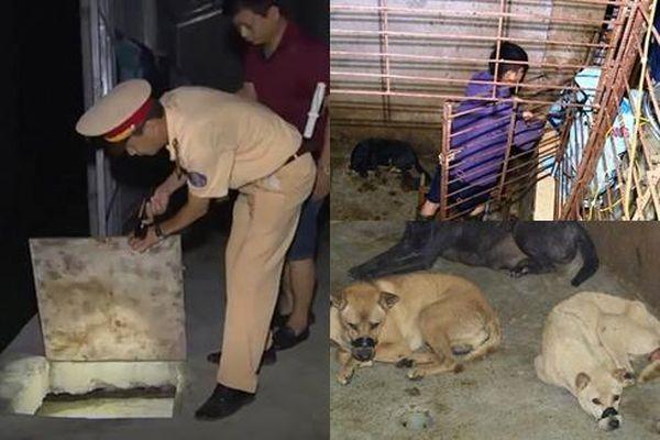 Cận cảnh căn hầm bí mật trong đường dây trộm 100 tấn chó ở Thanh Hóa