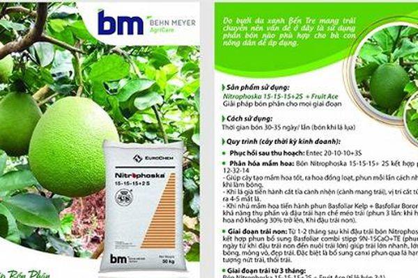 Giải pháp bón phân BM cho bưởi da xanh