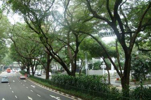 Các tập đoàn hàng đầu Singapore hứa rót tỷ USD vào Hà Nội