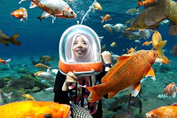 Biến ao nước ô nhiễm thành ngôi sao mạng xã hội ở Indonesia