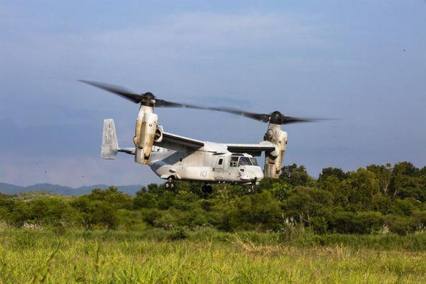 Mỹ, Nhật Bản cùng tập trận đổ bộ trên đảo Philippines, Trung Quốc lo lắng?