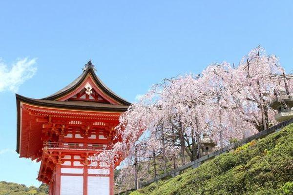 Hành trình khám phá vùng Kansai