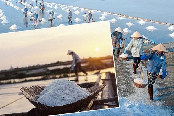 Về việc hỗ trợ bảo tồn phát triển nghề sản xuất muối phơi cát truyền thống tại Thái Bình