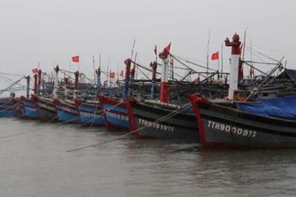 Thừa Thiên Huế kêu gọi hơn 2.000 tàu thuyền vào bờ tránh bão số 6