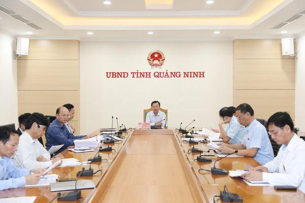 UBND tỉnh họp giải quyết một số vụ việc khiếu nại của công dân