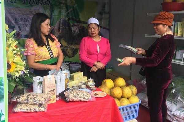 Khai mạc Tuần lễ giới thiệu sản phẩm cây ăn quả tỉnh Hòa Bình