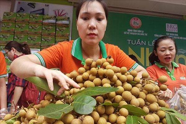 Sơn La: Tích cực bảo vệ môi trường trong sản xuất nông nghiệp