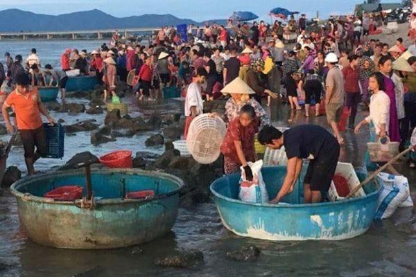 Sáng tinh mơ rủ nhau đi chợ cá Nhượng