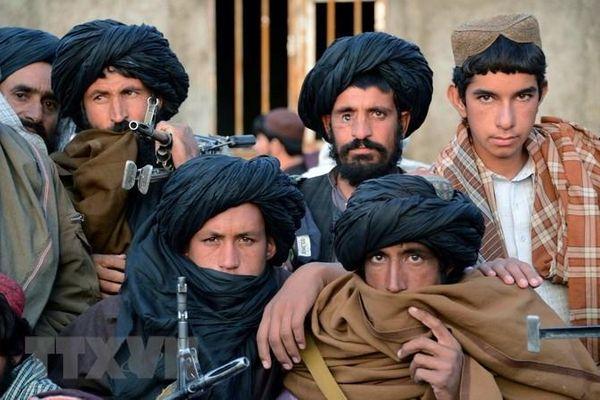 Afghanistan: Thêm 10 phiến quân Taliban ra đầu hàng